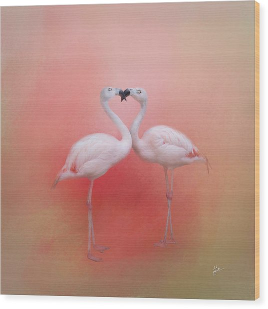 Fond Flamingos Wood Print