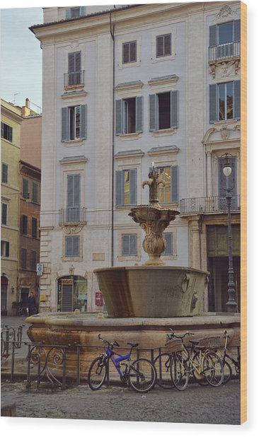 Fontana Di Piazza Farnese Wood Print by JAMART Photography