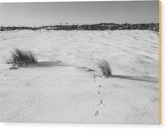 Footprints In The Snow I Wood Print