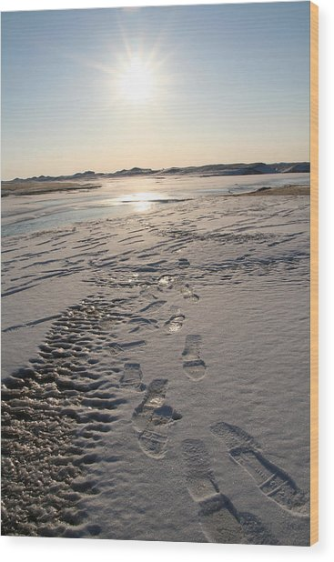 Footsteps In Frozen Landscape Wood Print by Christopher Purcell