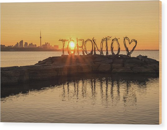 For The Love Of Toronto Wood Print