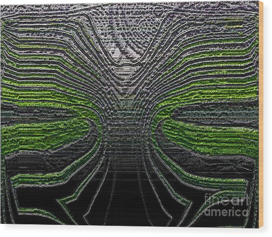 Force Lines Wood Print by Patrick Guidato