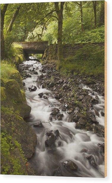 Forest Bridge - Columbia River Gorge Wood Print by John Gregg
