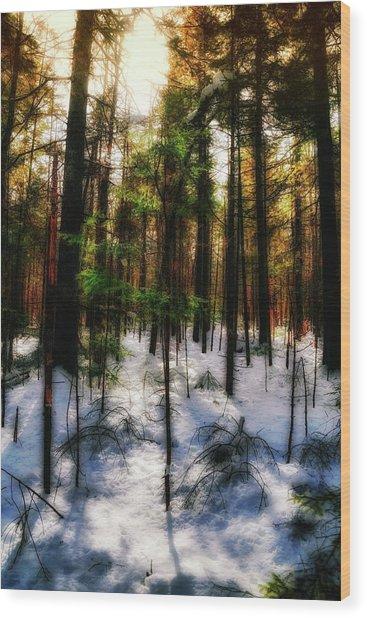 Forest Dawn Wood Print