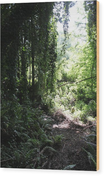 Forest Jungle Wood Print