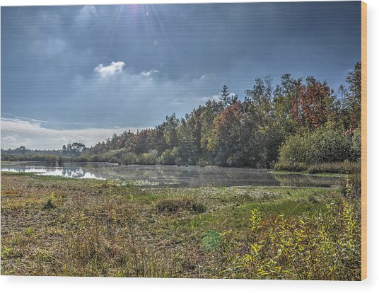 Forest Lake In Autumn Wood Print