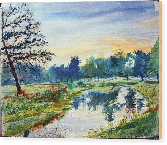 Forest Park At Dawn Wood Print by Horacio Prada