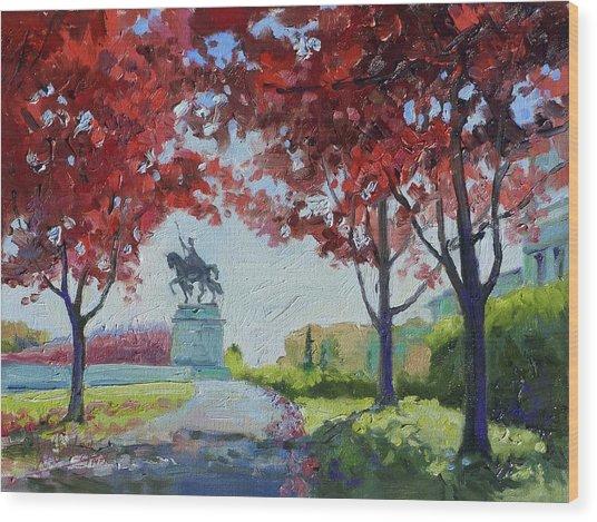 Forest Park Autumn Colors Wood Print