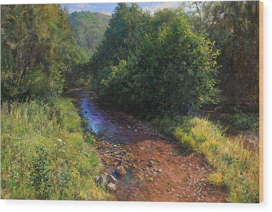 Forest River Summer Day Wood Print