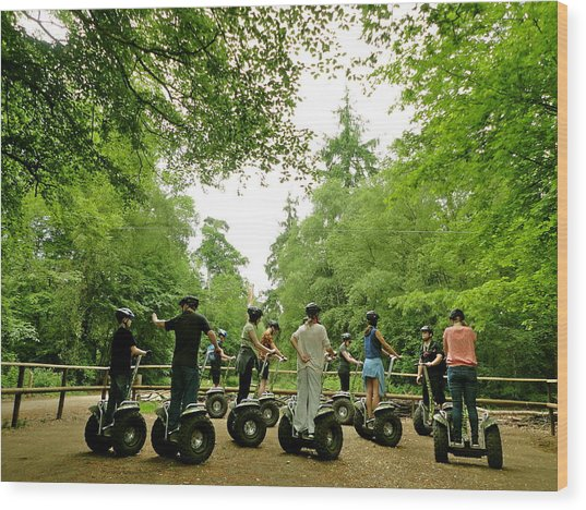 Forest Segway Wood Print