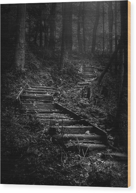 Forest Stairs Wood Print