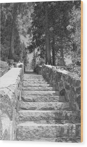 Forest Stairway Wood Print