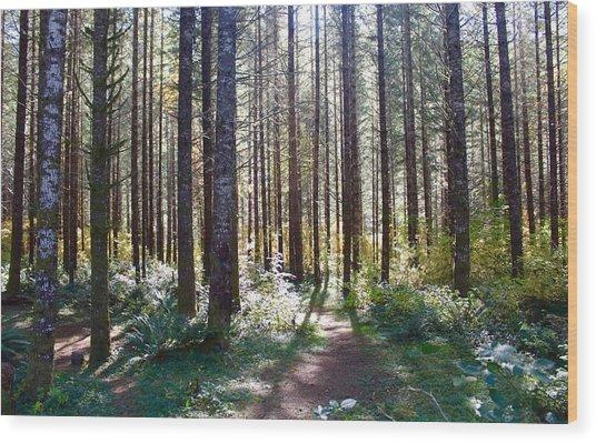Forest Stroll Wood Print
