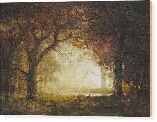 Forest Sunrise Wood Print