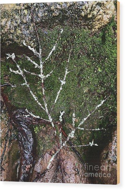 Forest's Finger Prints Wood Print