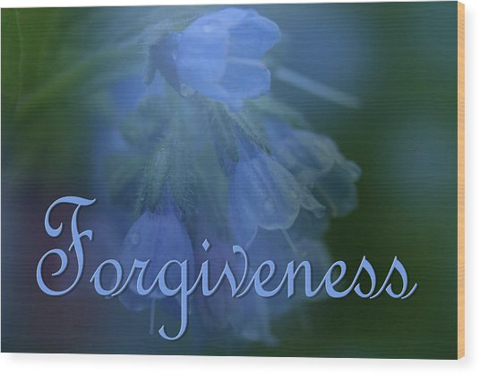 Forgiveness Blue Bells Wood Print