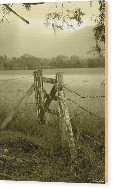 Forgotten Fields Wood Print