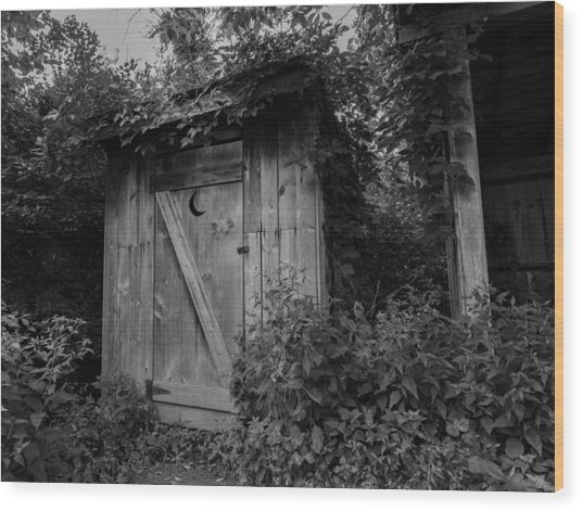 Forgotten Outhouse Wood Print by Denise McKay
