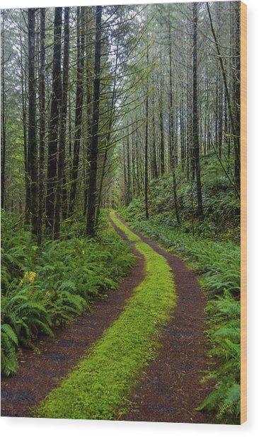 Forgotten Roads Wood Print