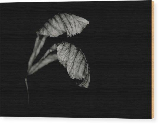 Form Study No. 58 Wood Print