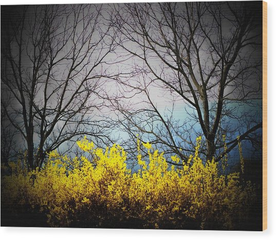 Forsythia By The Mountains Wood Print by Joyce Kimble Smith