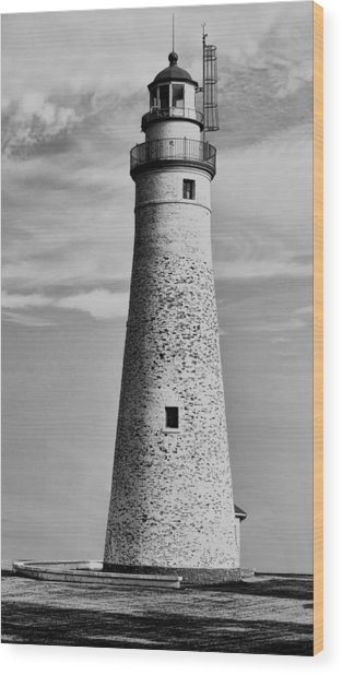 Fort Gratiot Lighthouse Wood Print