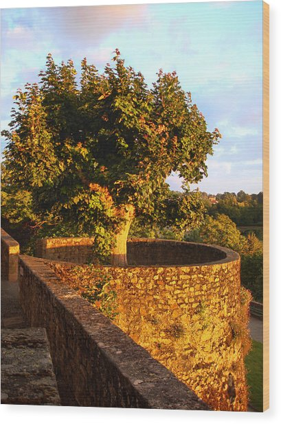Fortress Tree At Sunset In Le Dorat Wood Print