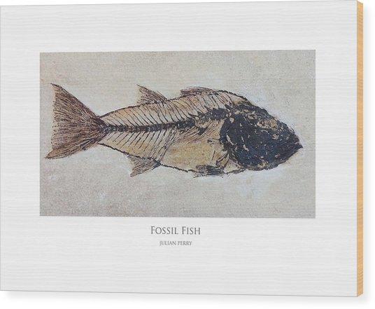Fossil Fish Wood Print