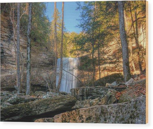 Lower Greeter Falls 1 Wood Print by Dale Wilson