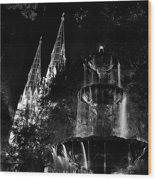 Fountain And Spires Wood Print