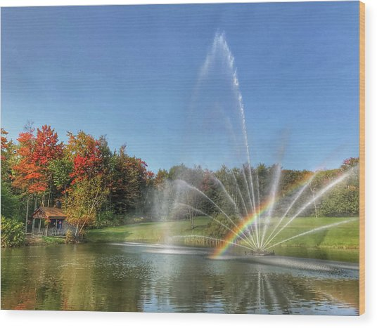 Fountain At Tater Hill Wood Print