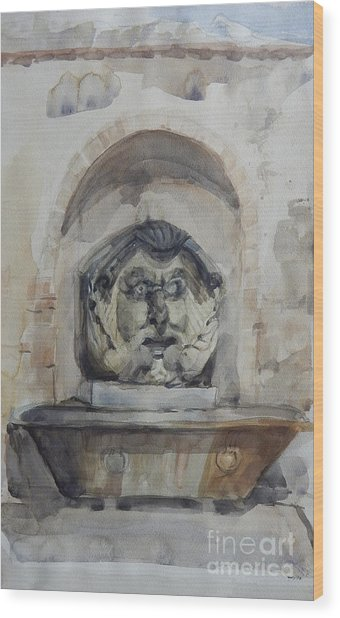 Fountain In Rome Wood Print