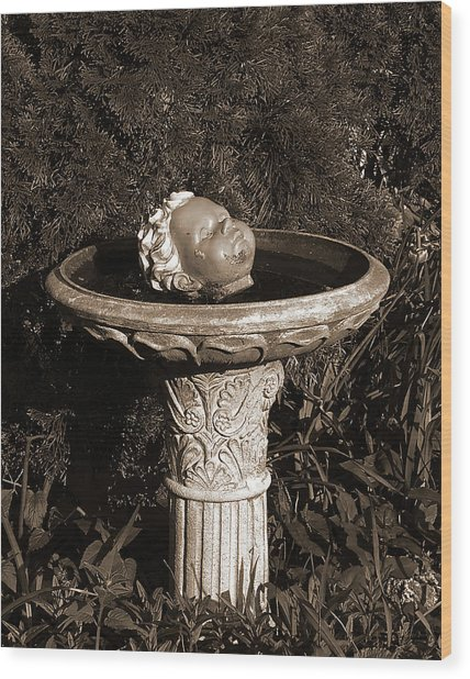 Fountain Of Youth Wood Print