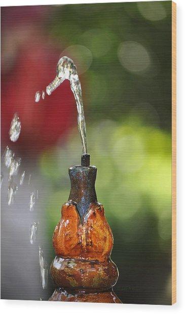 Fountain Tip Wood Print