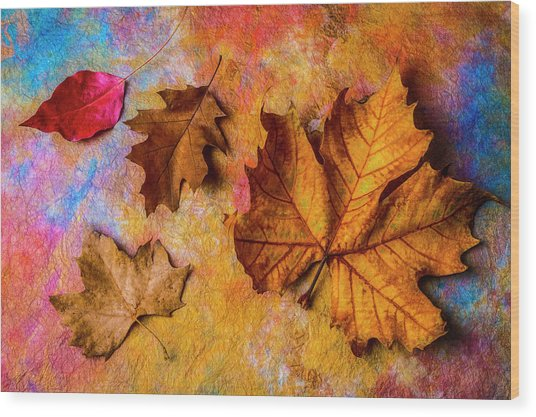 Four Autumn Leaves Wood Print