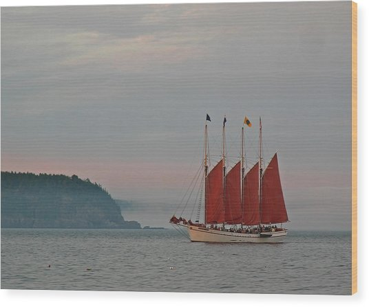 Four-masted Schooner The Margaret Todd Wood Print by Juergen Roth
