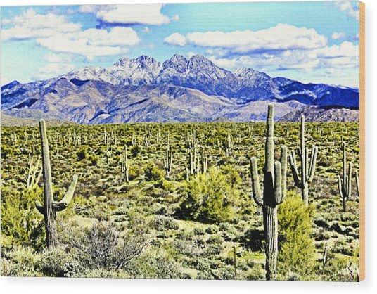 Four Peaks Wood Print by Sharon Broucek