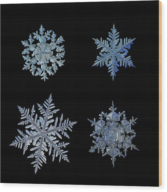 Four Snowflakes On Black Background Wood Print