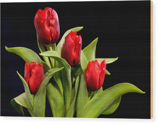 Four Tulips Wood Print