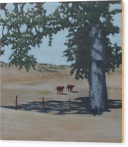 Fox Canyon Ranch Wood Print