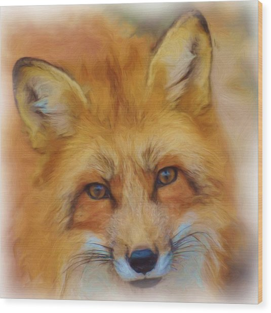 Fox Face Taken From Watercolour Painting Wood Print