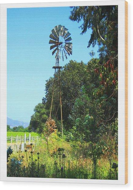 Foxen Adobe Windmill Wood Print by Deborah Hildinger