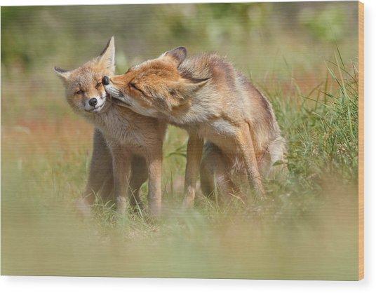 Foxy Love Series - But Mo-om II Wood Print