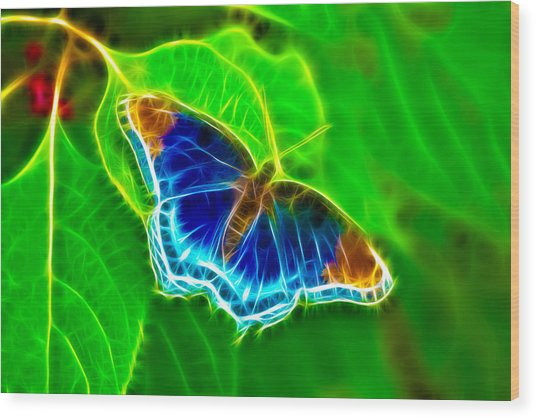 Fractal Butterfly Wood Print by Rich Leighton