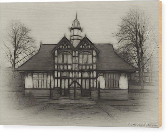 Fractal Pavilion Wood Print by David J Knight
