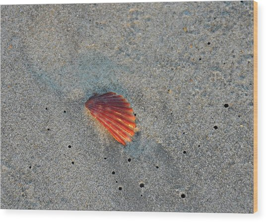 Fiery Fracture Wood Print by JAMART Photography