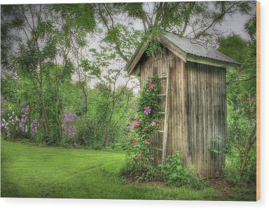 Fragrant Outhouse Wood Print