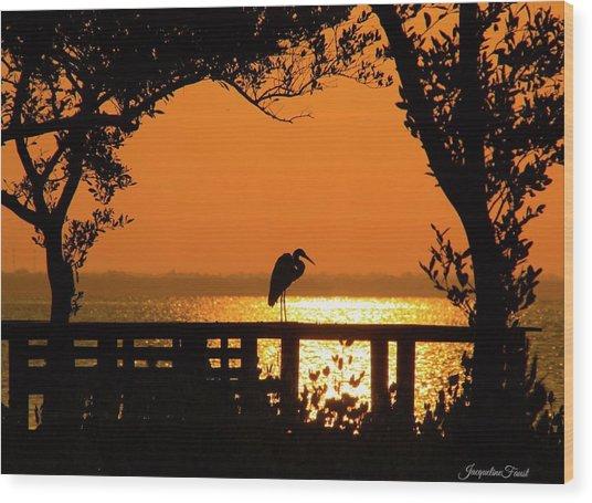 Framed Great White Egret Wood Print