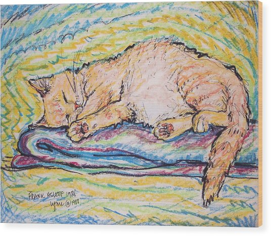 Frank Asleep Wood Print
