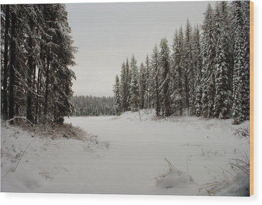Frater Lake Wood Print